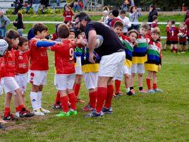 stagione sportiva 2016 2017 rugby perugia junior